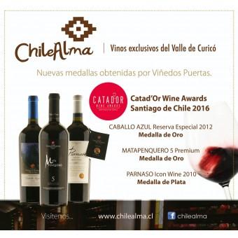 Medallas Catadór Wine Awards Chile 2016